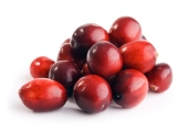 Cranberries_XSmall_resized.jpg