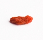 Goji_Berry_XSmall_resized.jpg