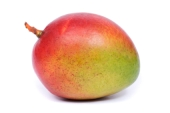Mango_XSmall_resized.jpg